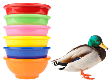 stack of multicolored bowls with mallard